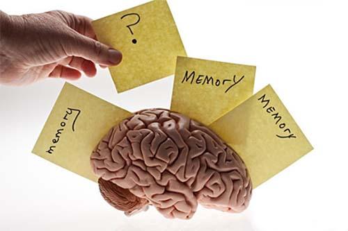 Hội chứng suy giảm trí nhớ có thể gặp ở cả người cao tuổi và trẻ tuổi