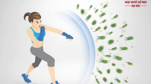 tăng cường đề kháng cho cơ thể