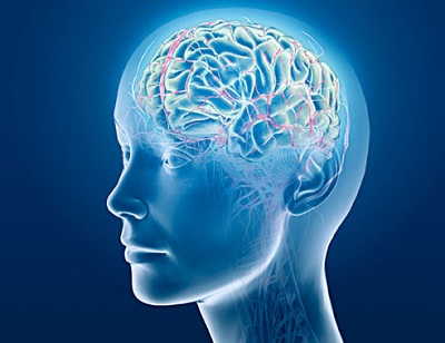 Lưu thông máu kém ảnh hưởng trí não