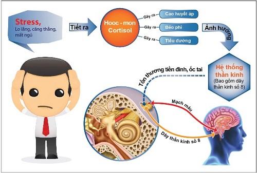 rối loạn tuần hoàn ngoại biên là gì