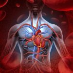 Các bài tập dành cho người lưu thông máu kém