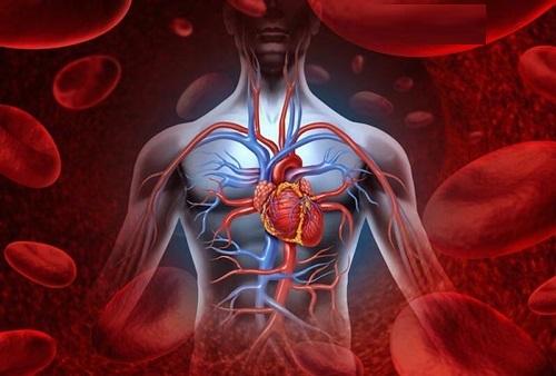 Bài tập thể dục lưu thông máu lên não