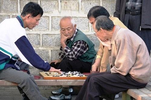 Bệnh giảm trí nhớ ở người già