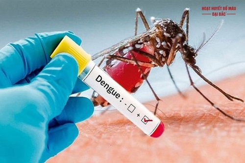 Bệnh sốt xuất huyết ủ bệnh trong bao lâu