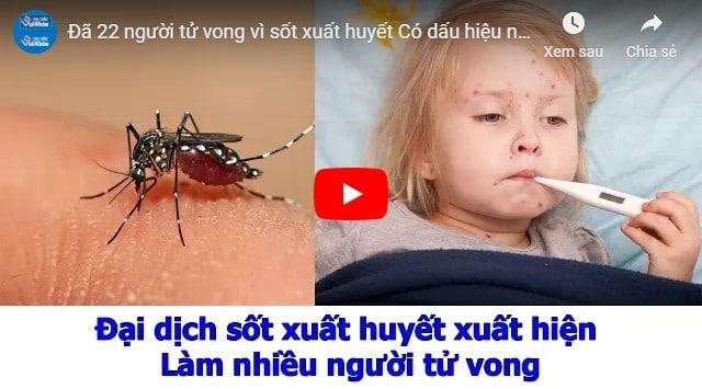 Video cách xử lý bệnh sốt xuất huyết