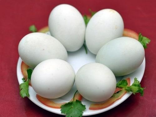 Ăn trứng vịt lộn cần lưu ý gì