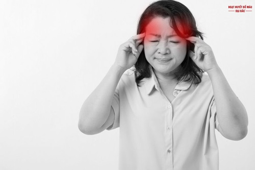 Lá ngải cứu trị đau đầu
